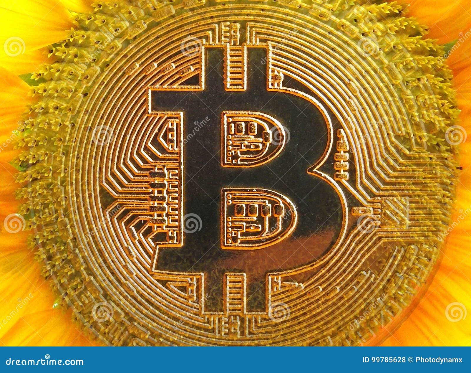 Girasol digital del cryptocurrency de Bitcoin