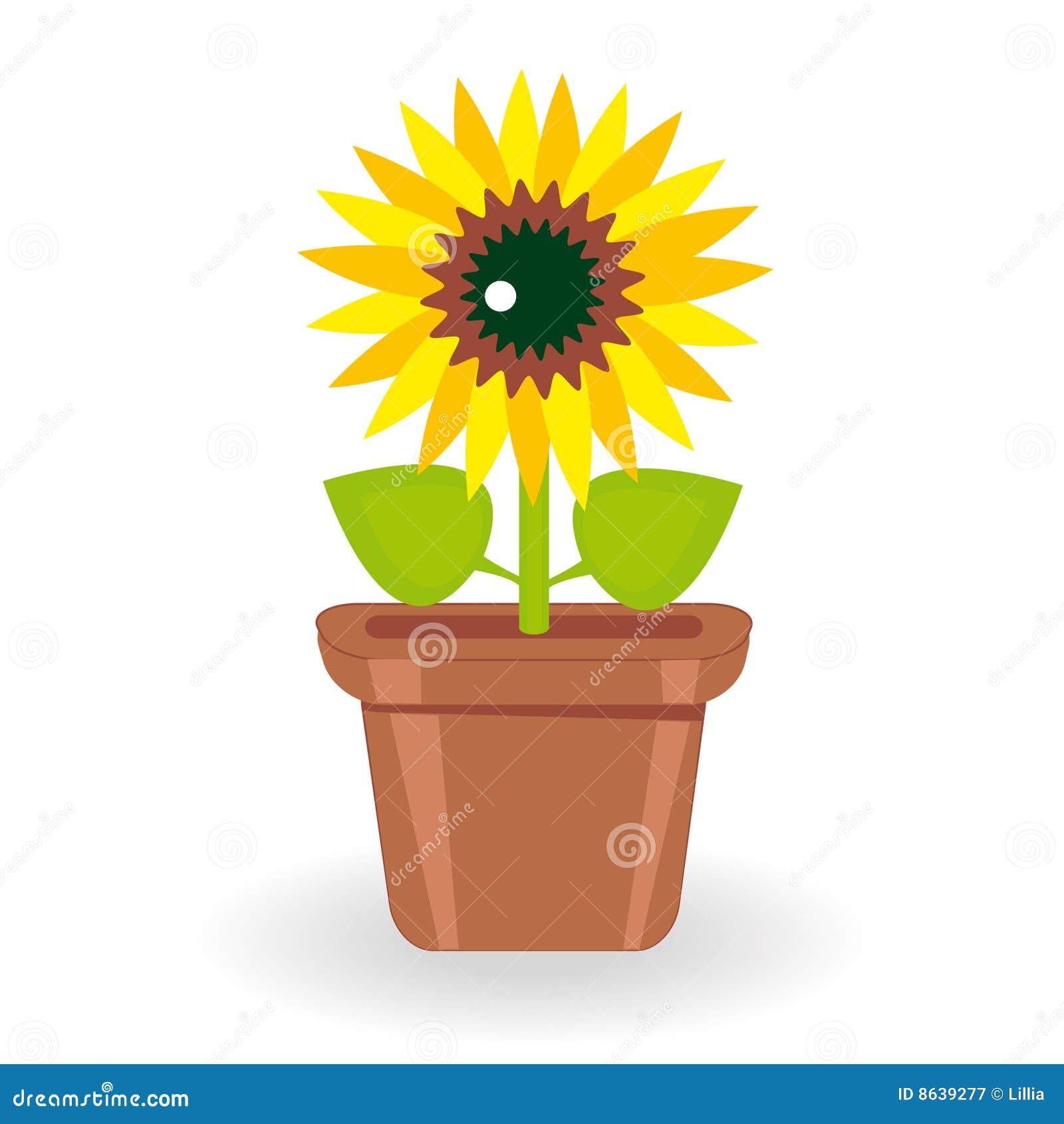 Girasol en maceta en el fondo blanco stock de ilustraci n for Imagenes de plantas en macetas