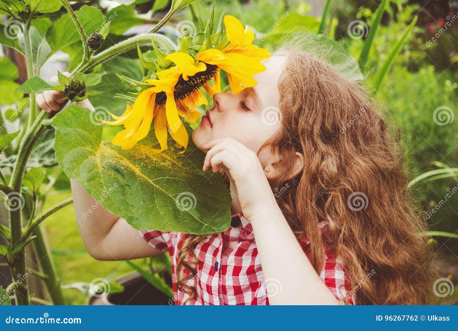 Girasol rizado del olor de la muchacha que disfruta de la naturaleza en día soleado del verano