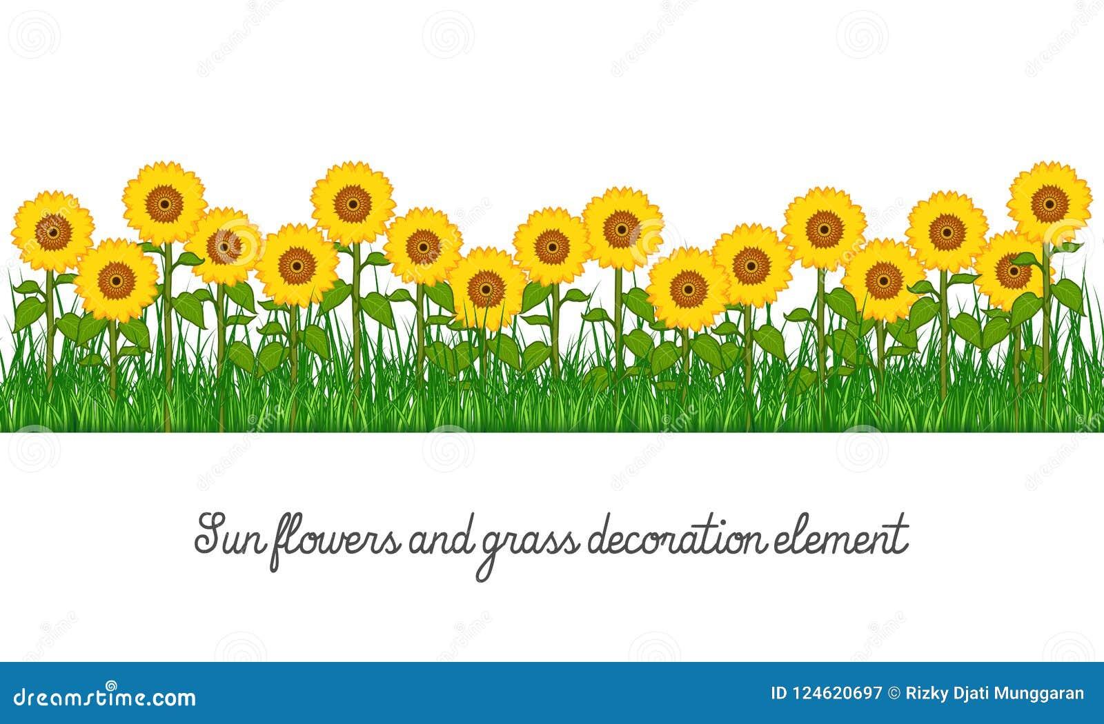 Girasoles y elemento de la decoración de la hierba