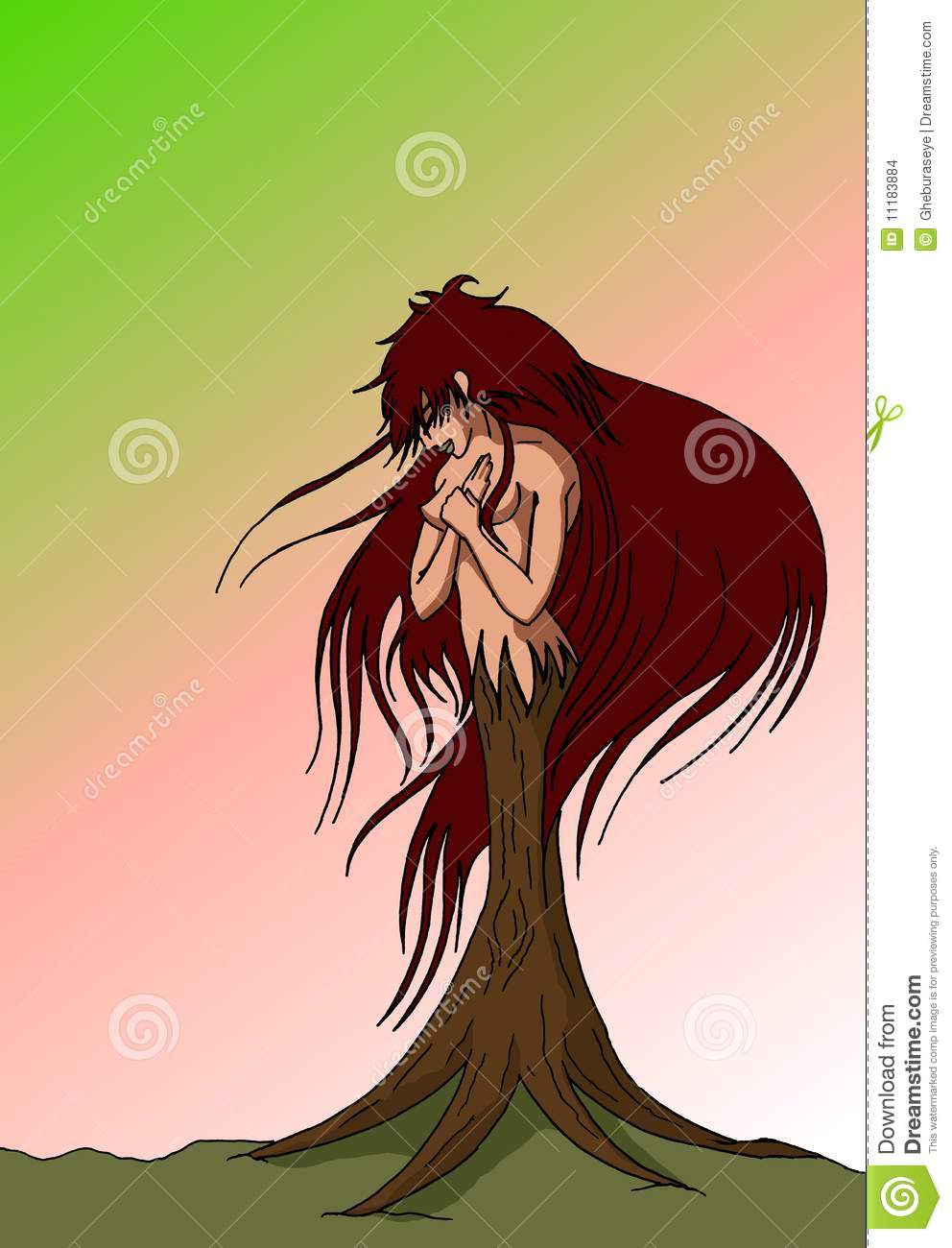 Woman Transformed Into A Tree Stock Photo - Image: 11183884