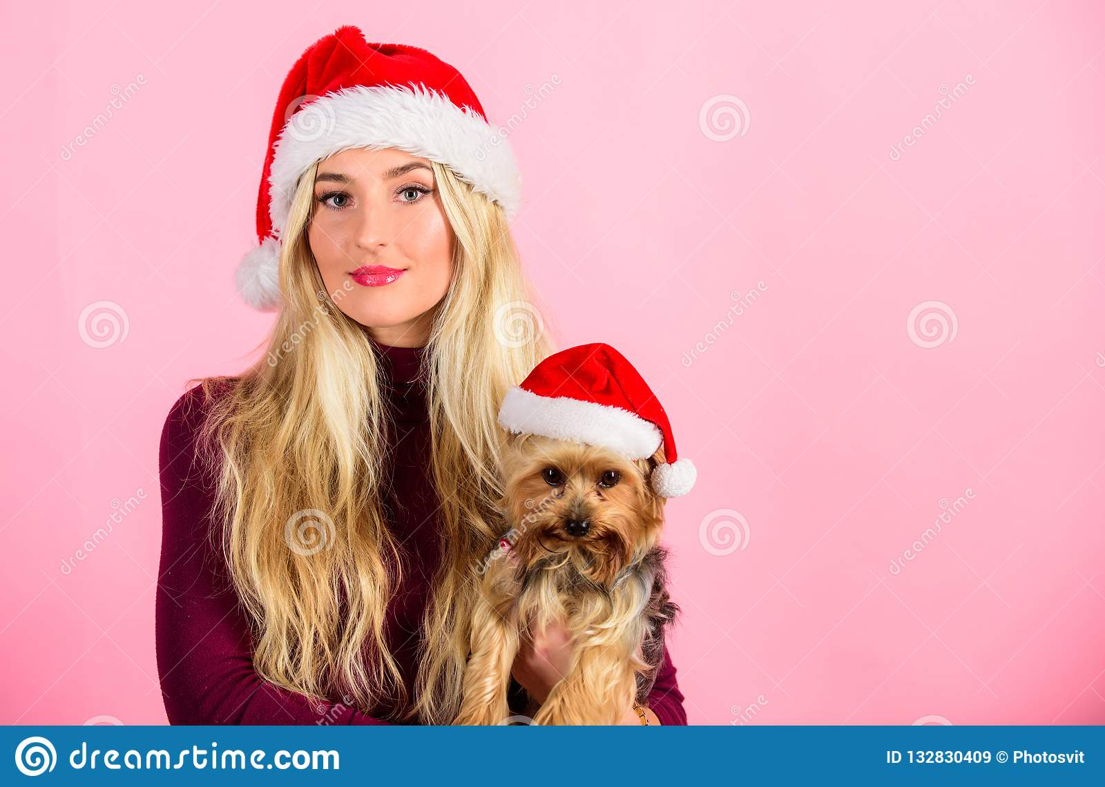 Girl attractive blonde hold dog pet pink background. Woman with puppy wear santa hat. Celebrate christmas with pets