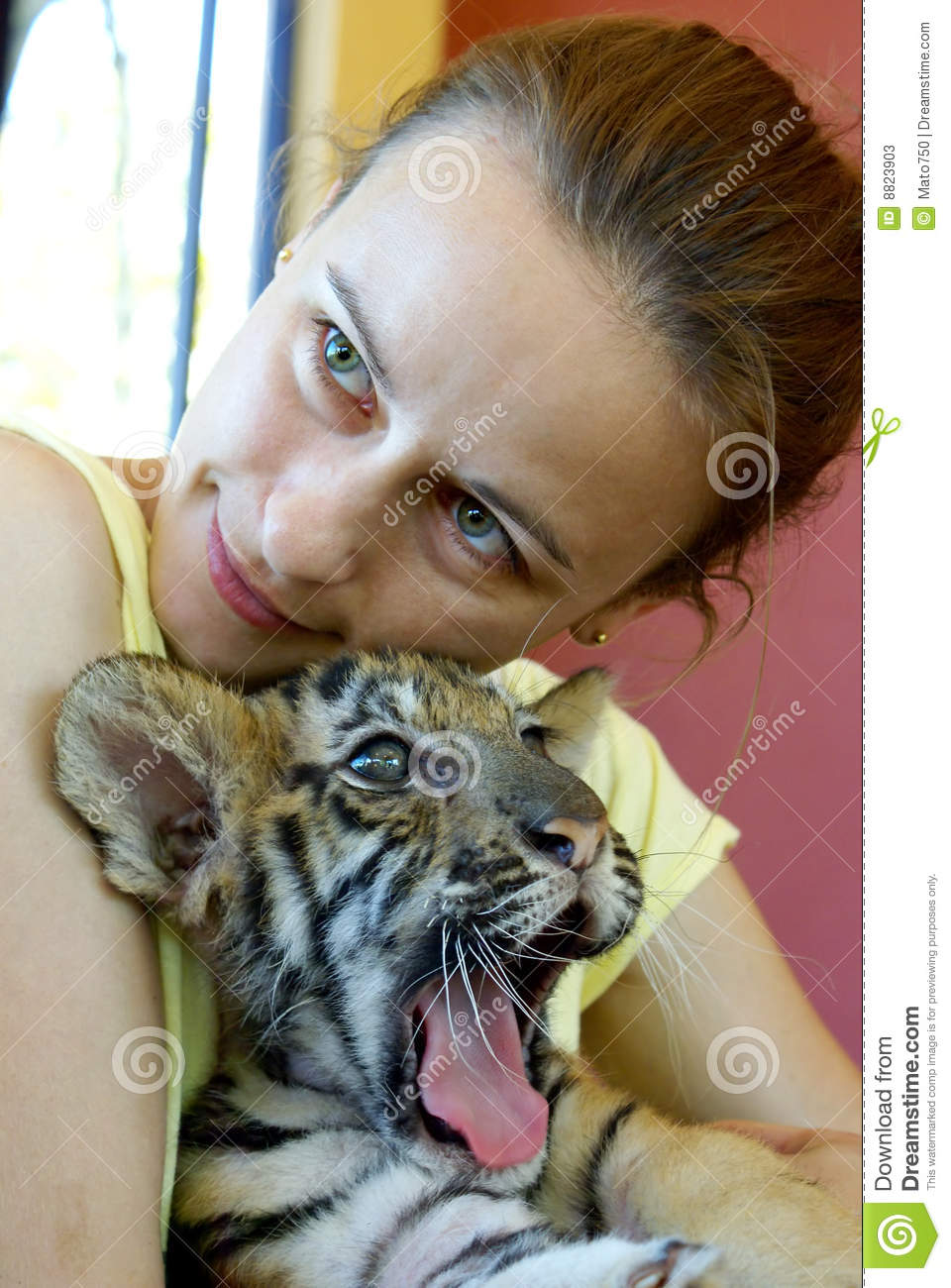 girl with baby tiger stock photos image 8823903 clip art puppies black labs clip art puppies tgif