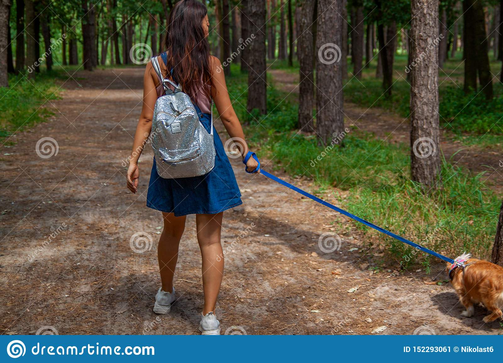 Girl on bicycle with dog walking in a park with turf grass background outdoor.