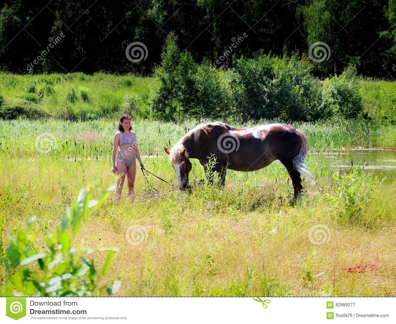 Girl Bikini Horse Stock Photos Royalty Free Stock Images