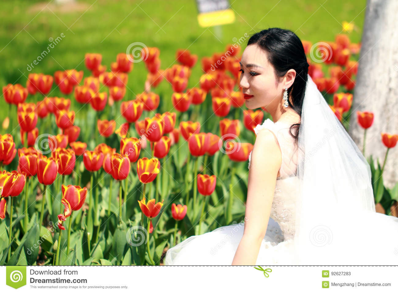 Girl bride in wedding dress with elegant hairstyle, with white wedding dress in red Tulips field