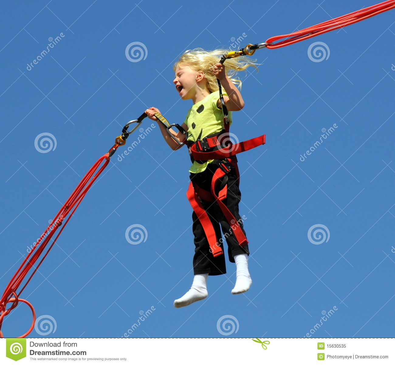 Bungee jumping as a business: A business plan