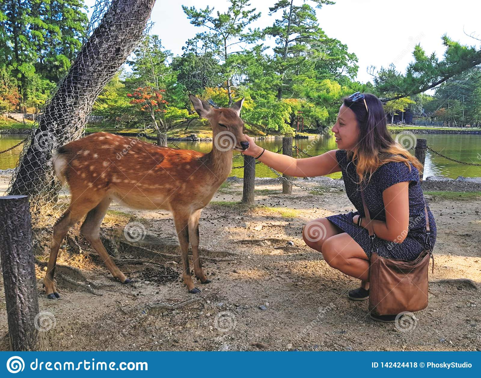 The girl caresses the deer.