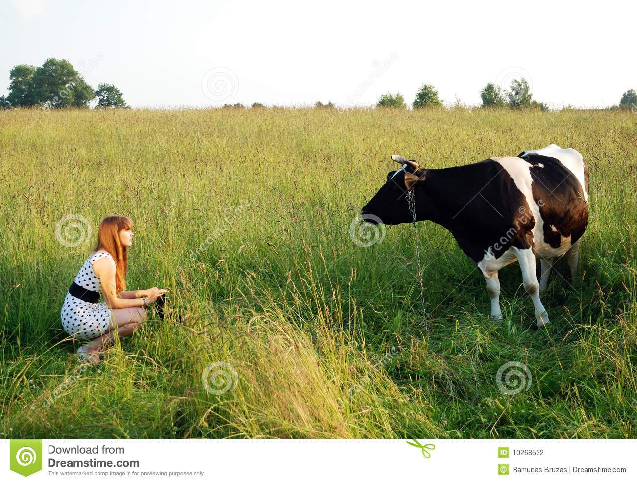 Download The Girl And The Cow stock photo. Image of travel, field - 10268532