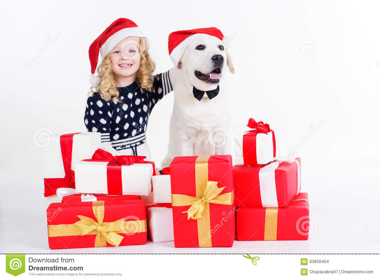 Girl And Dog Are Sitting With Christmas Gifts Stock Photo - Image of ...
