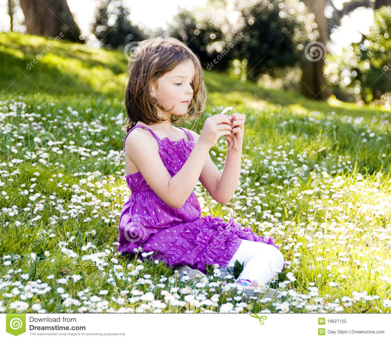 Girl In Field Of Flowers Royalty Free Stock Photo - Image ...