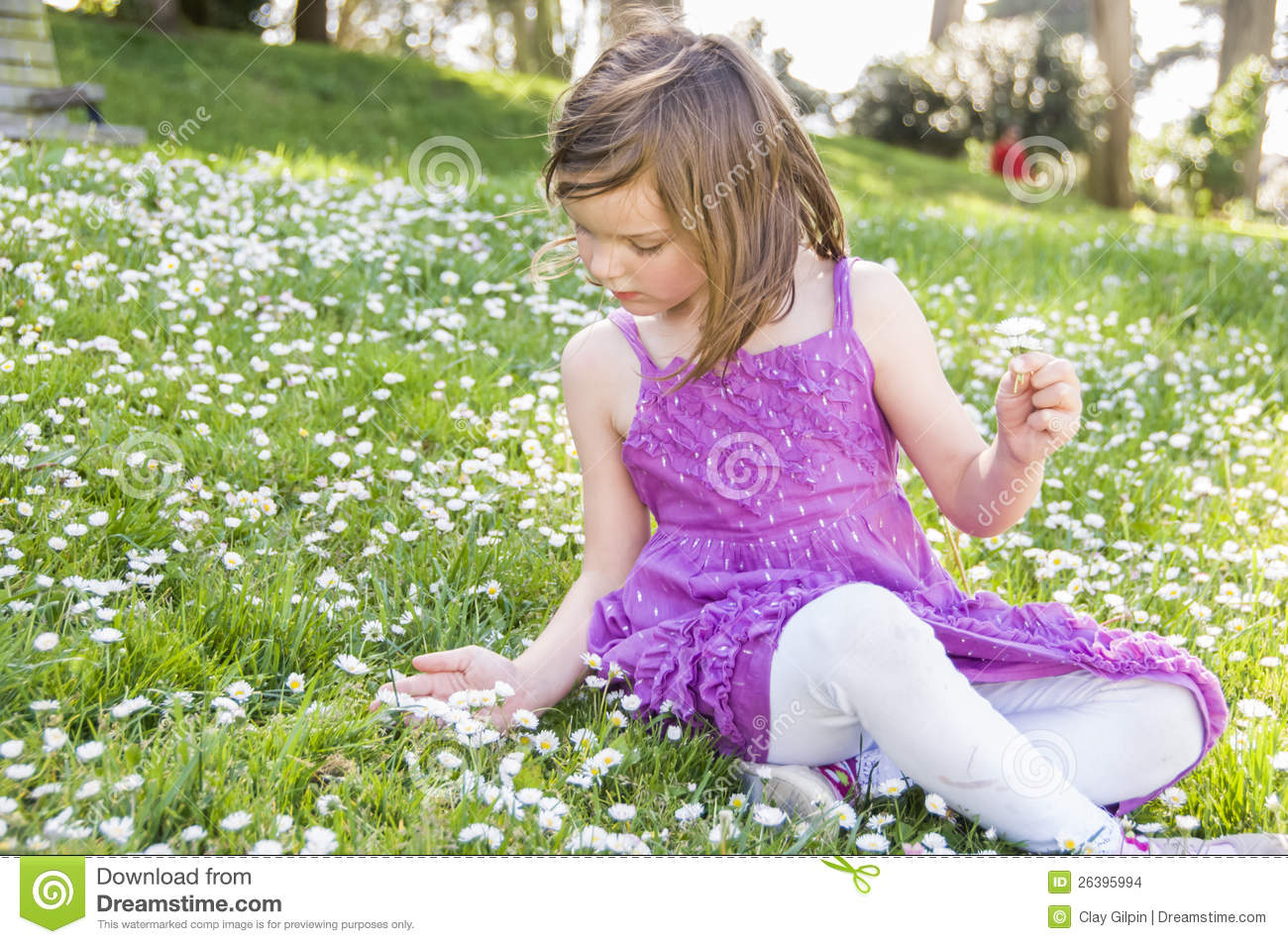Girl In Field Of Flowers Stock Images - Image: 26395994