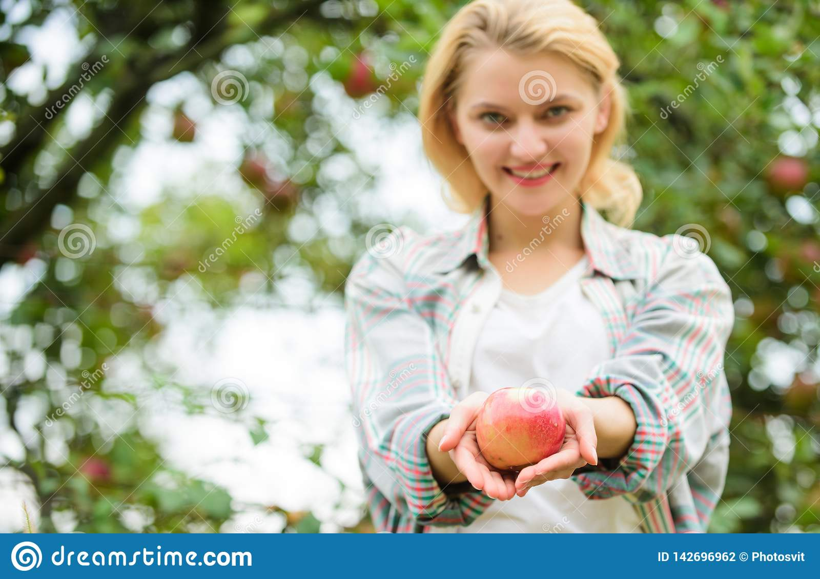 Girl gather apple harvest in own garden. Farmer girl hold apple. Local crops concept. Healthy lifestyle. Eat fruits