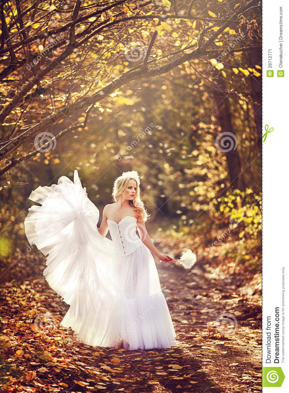 Girl in a wedding dress stock image. Image of pretty - 29712771