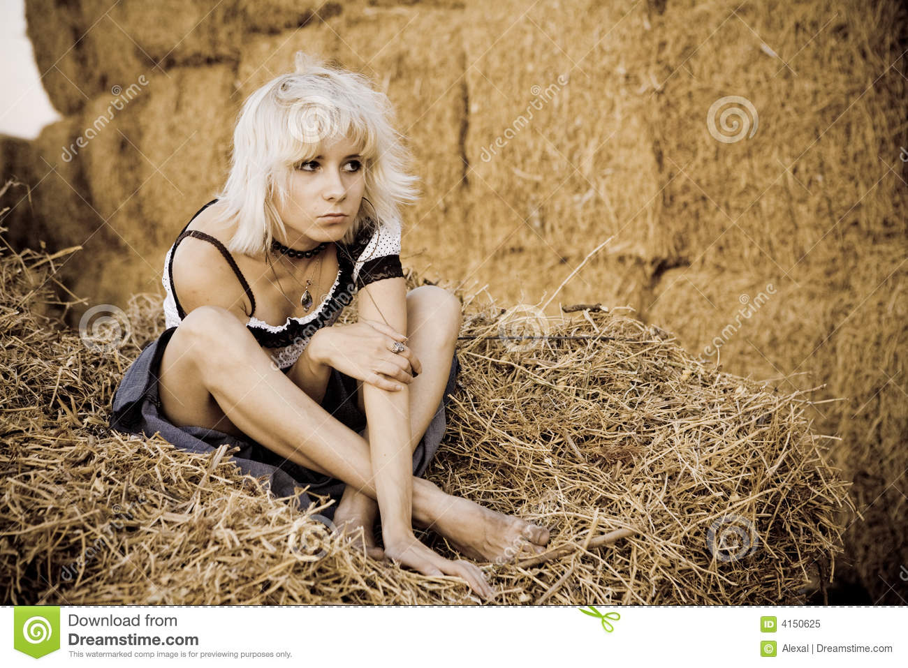 hay girls Hay is grass, legumes, or other herbaceous plants that have been cut, dried, and stored for use as animal fodder, particularly for grazing animals such as cattle.