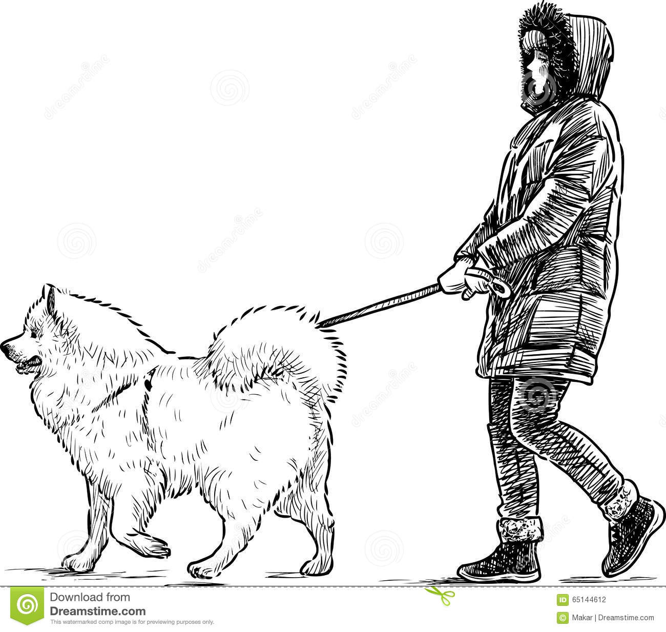 how to walk a strong dog