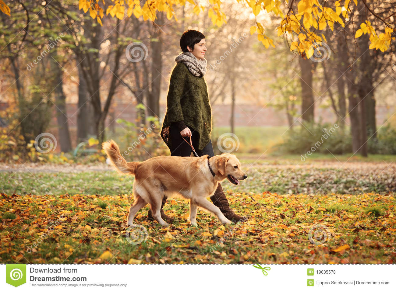 Download A Girl And Her Dog Walking In A Park In Autumn Stock Photo - Image of casual, friendship: 19035578