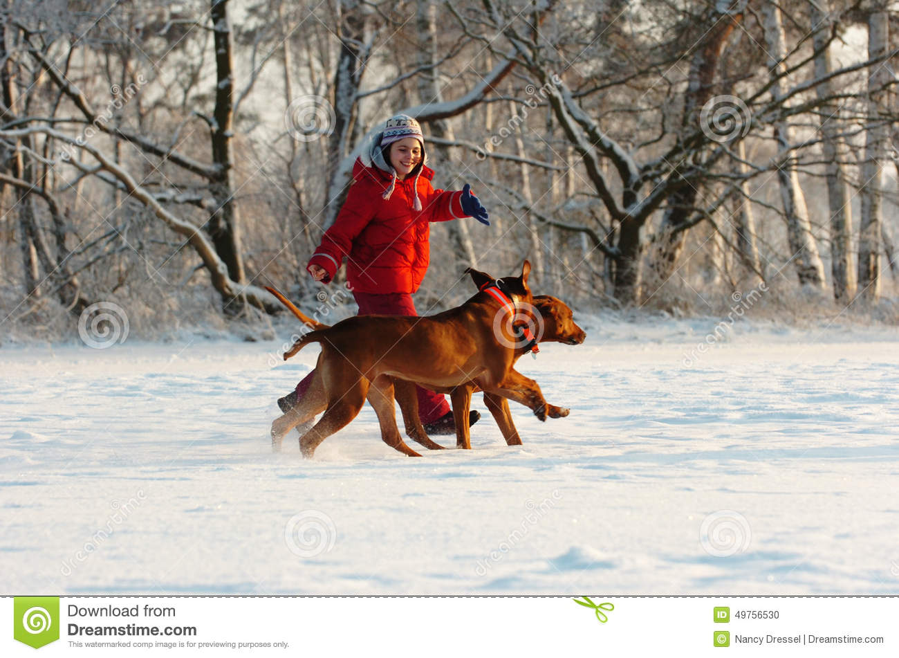 Girl with her dogs in snow stock photo image 49756530 - Keeping outdoor dog happy winter ...