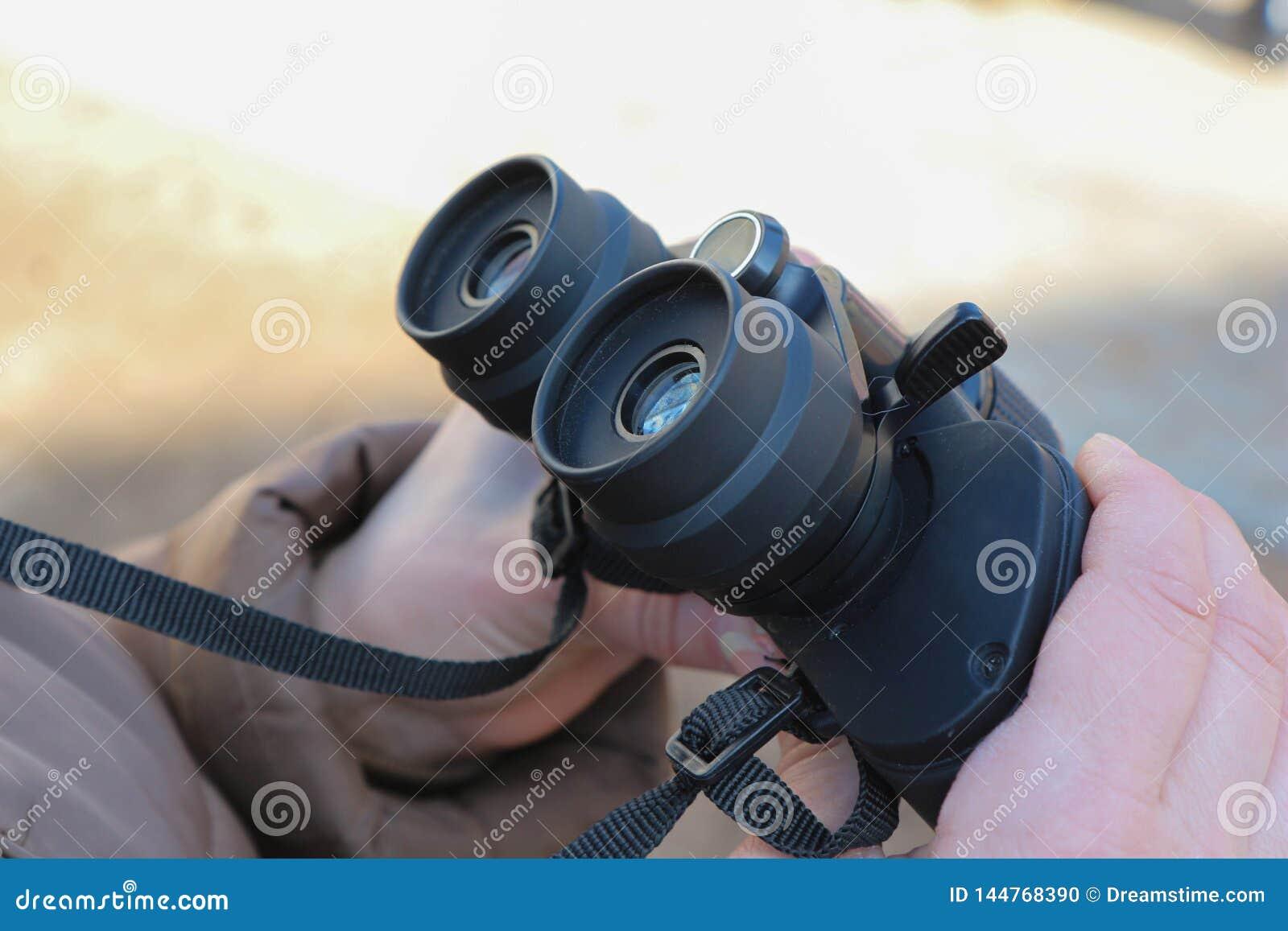 girl holding binoculars in her hands