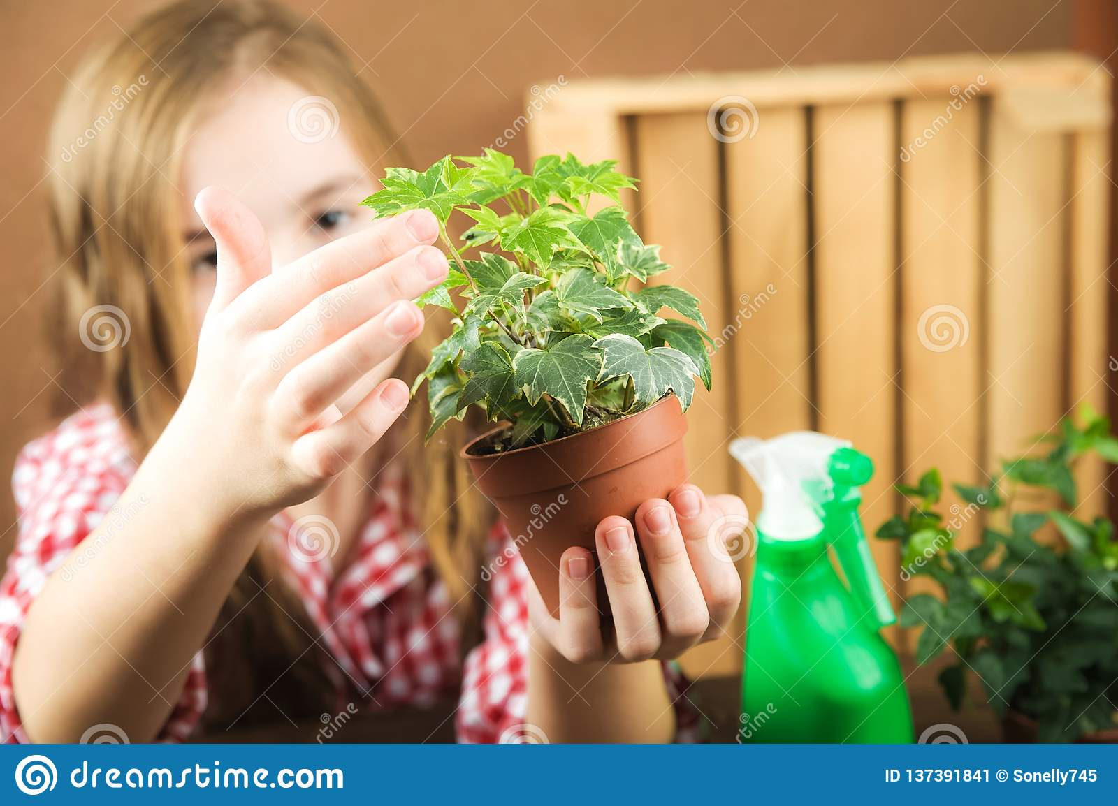 A Girl Is Holding A Pot With A Flower  A Girl In A Plaid