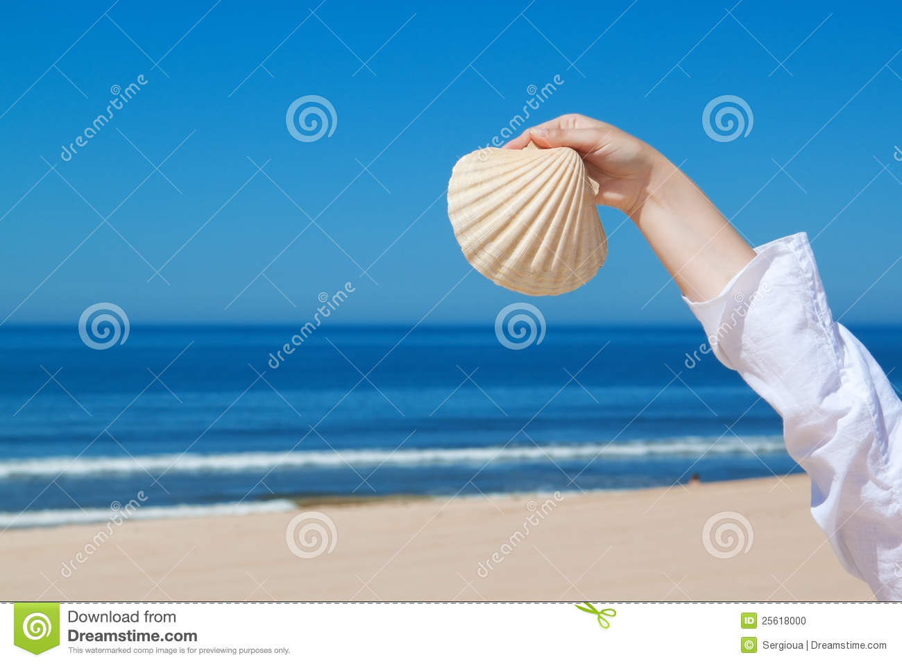 A girl holds a large seashell.
