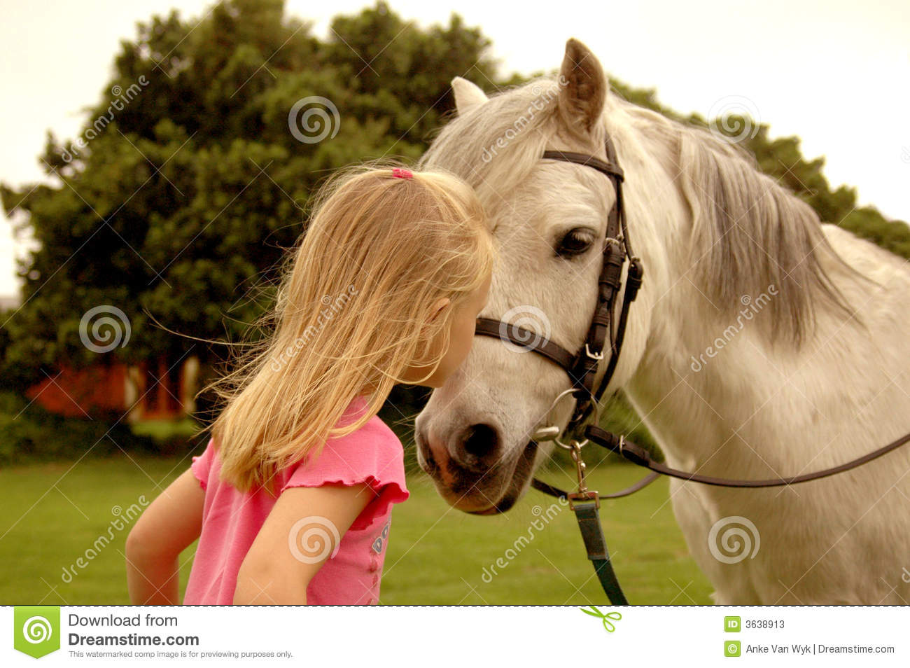 Girl kissing pony