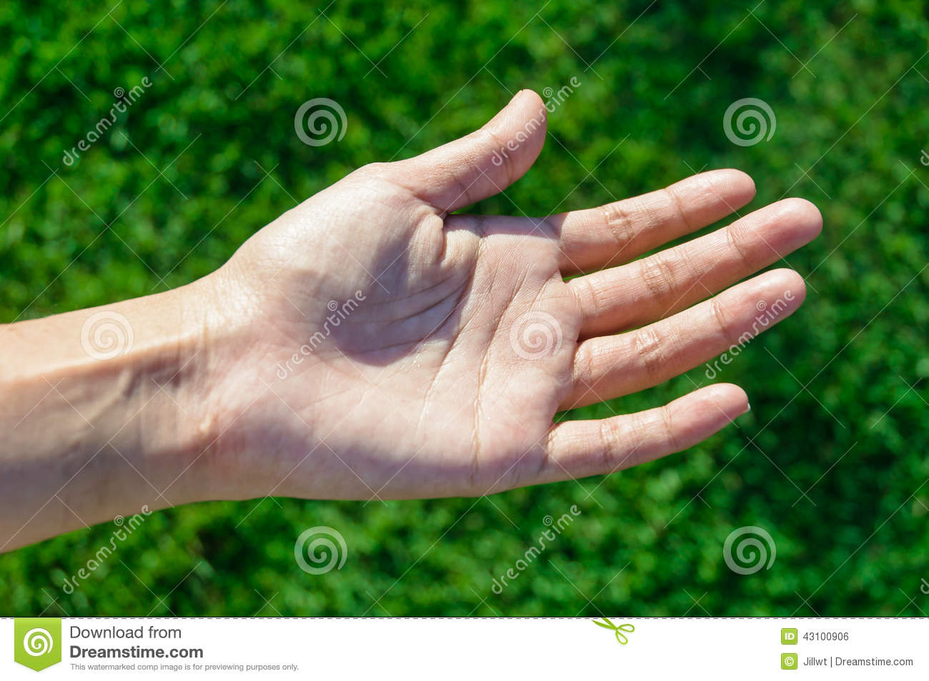left hand hindu single women Why not the same hand for both genders why not left for women  left and right for male and  does the indian passport renewal form ask for left hand thumb .