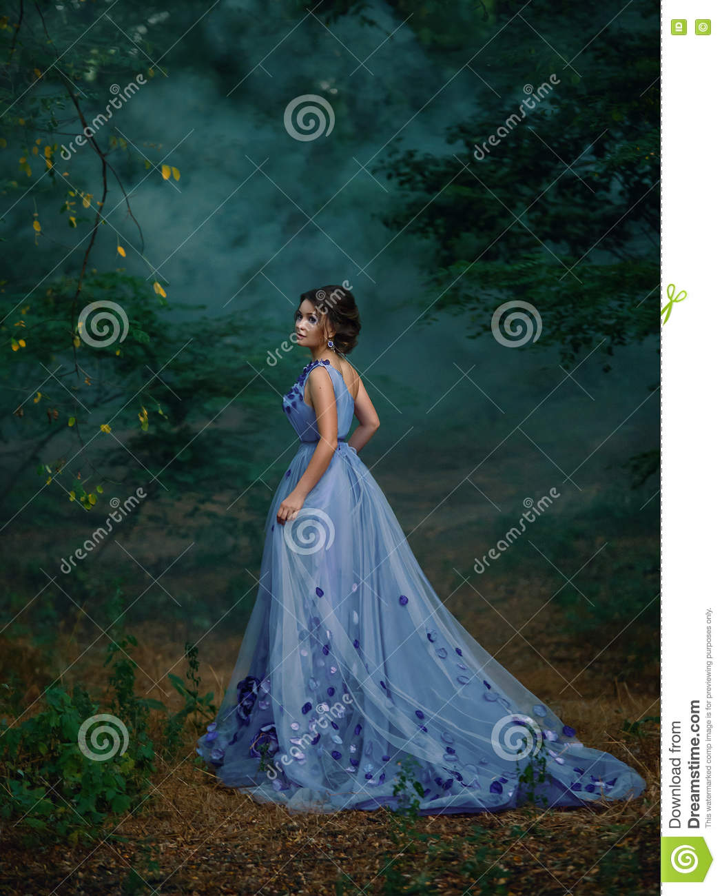 Girl in a long dress,wandering the forest in the fog