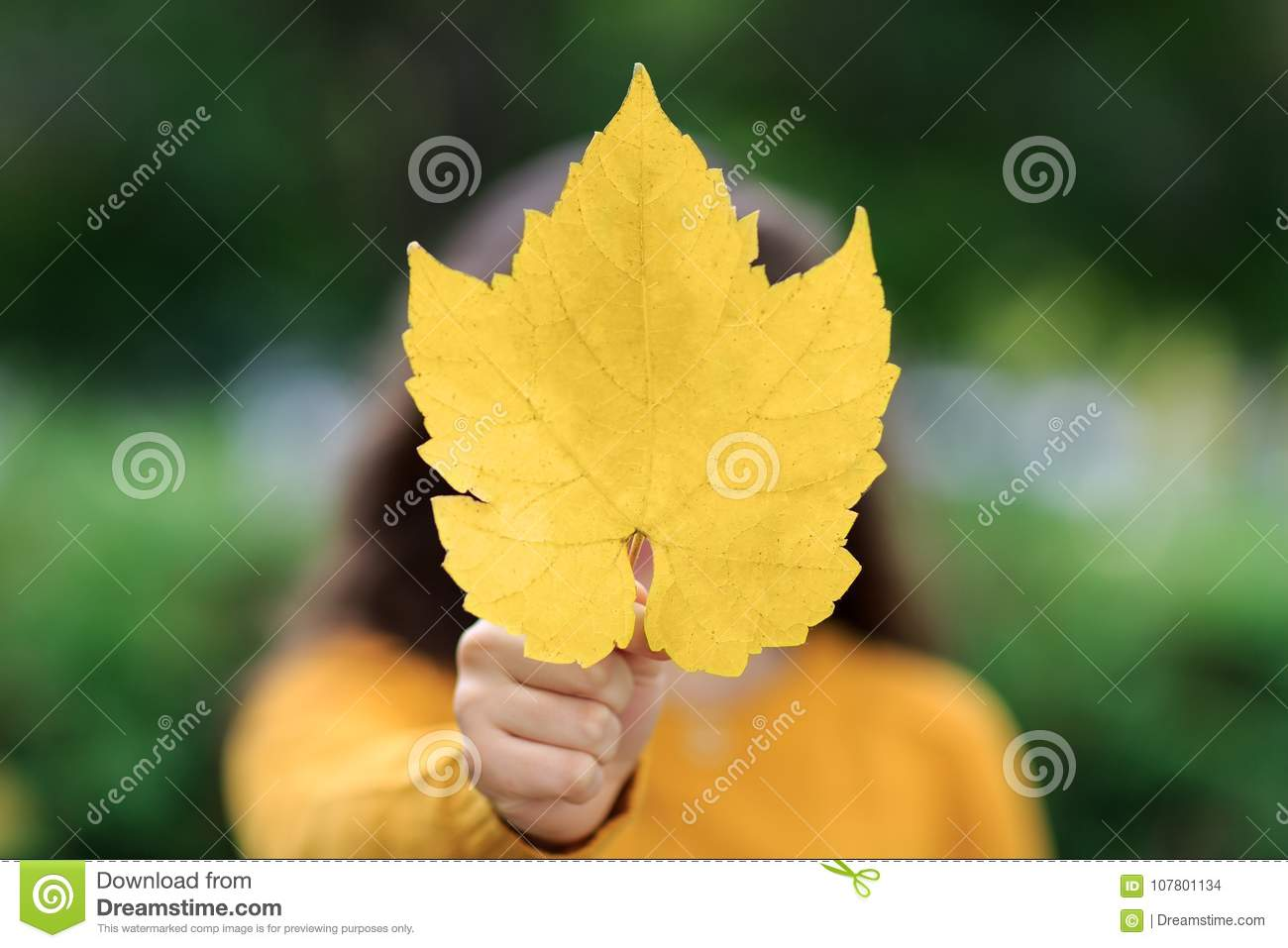 Girl With Maple Leaf As Canadian Symbol Isolated On Yellow Stock