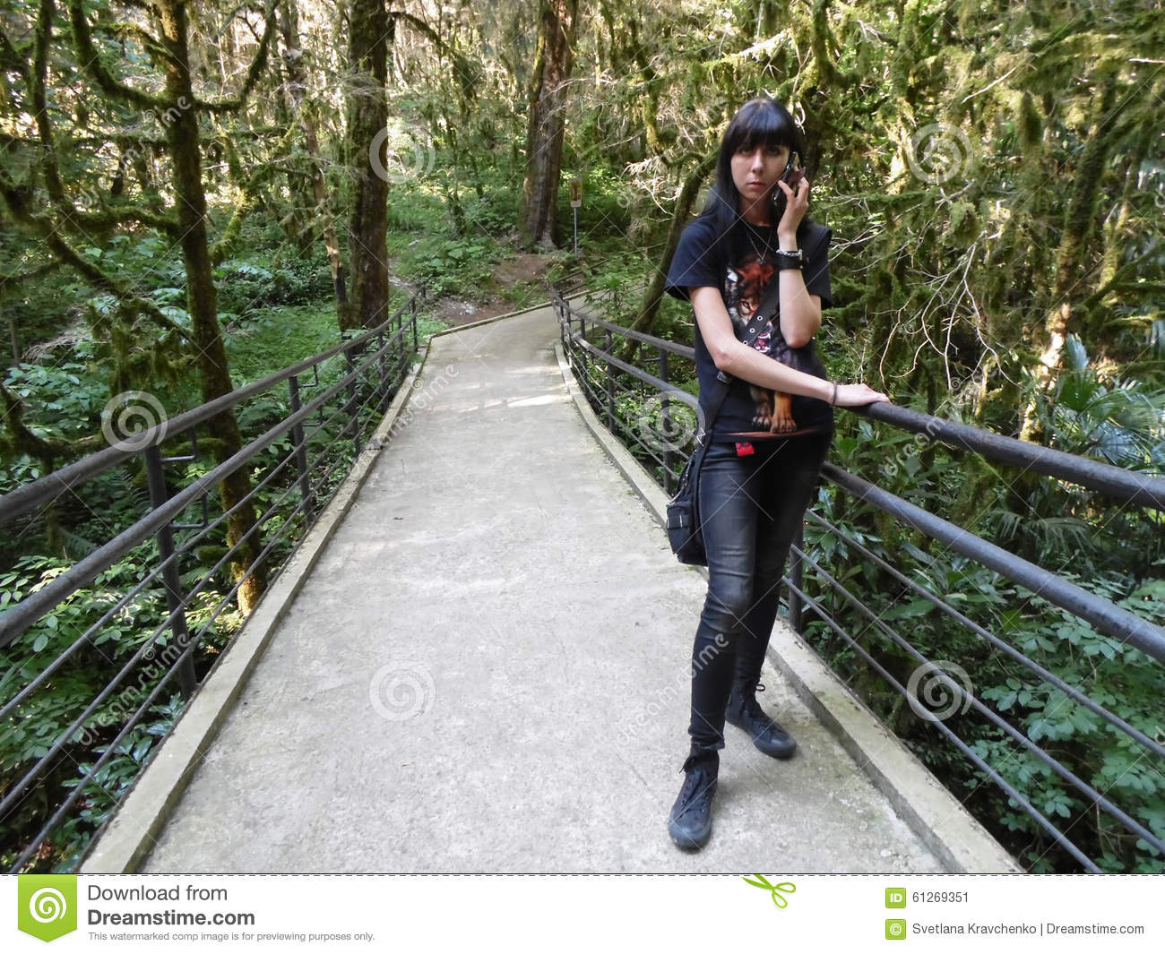 Download Girl With Phone Standing On The Bridge In The Relict Grove Stock Image - Image of nature, standing: 61269351