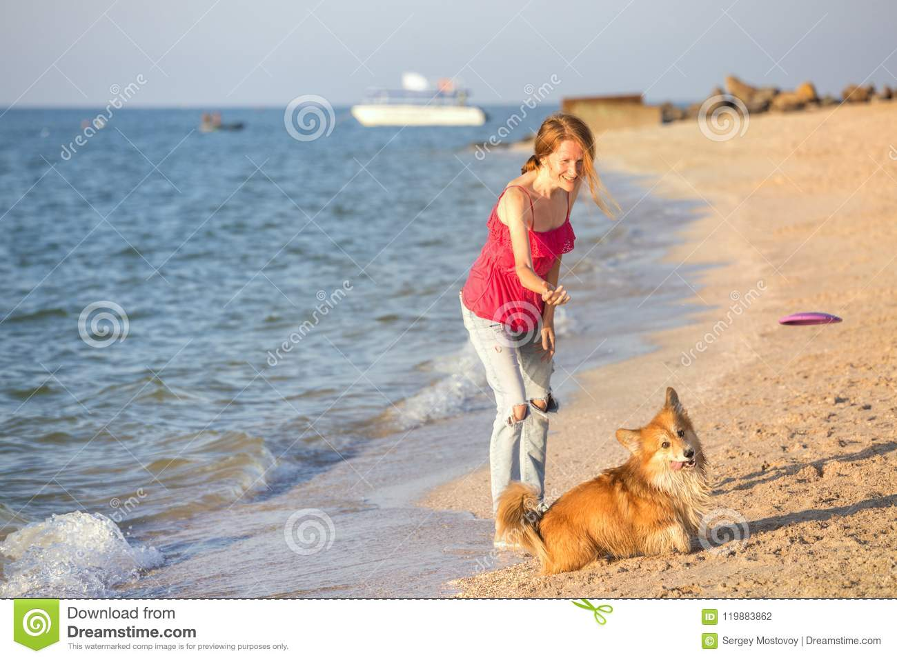 Girl Playing With A Dog On The Beach Stock Photo - Image of emotions