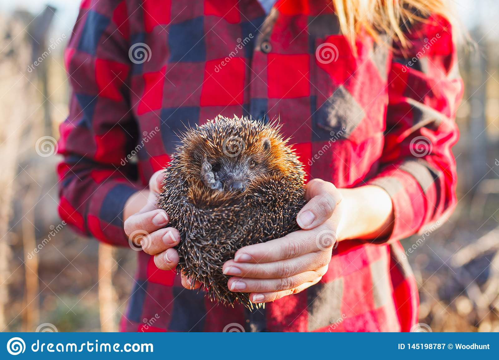 Girl in a red plaid shirt holding a hedgehog