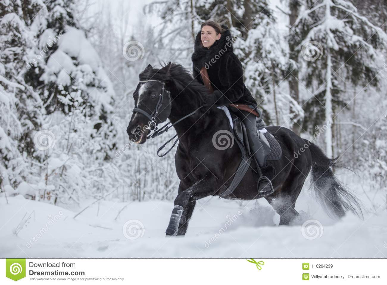 Black Horse Running In Snow On Winter Background Stock Image Image Of Beautiful Cold 110294239