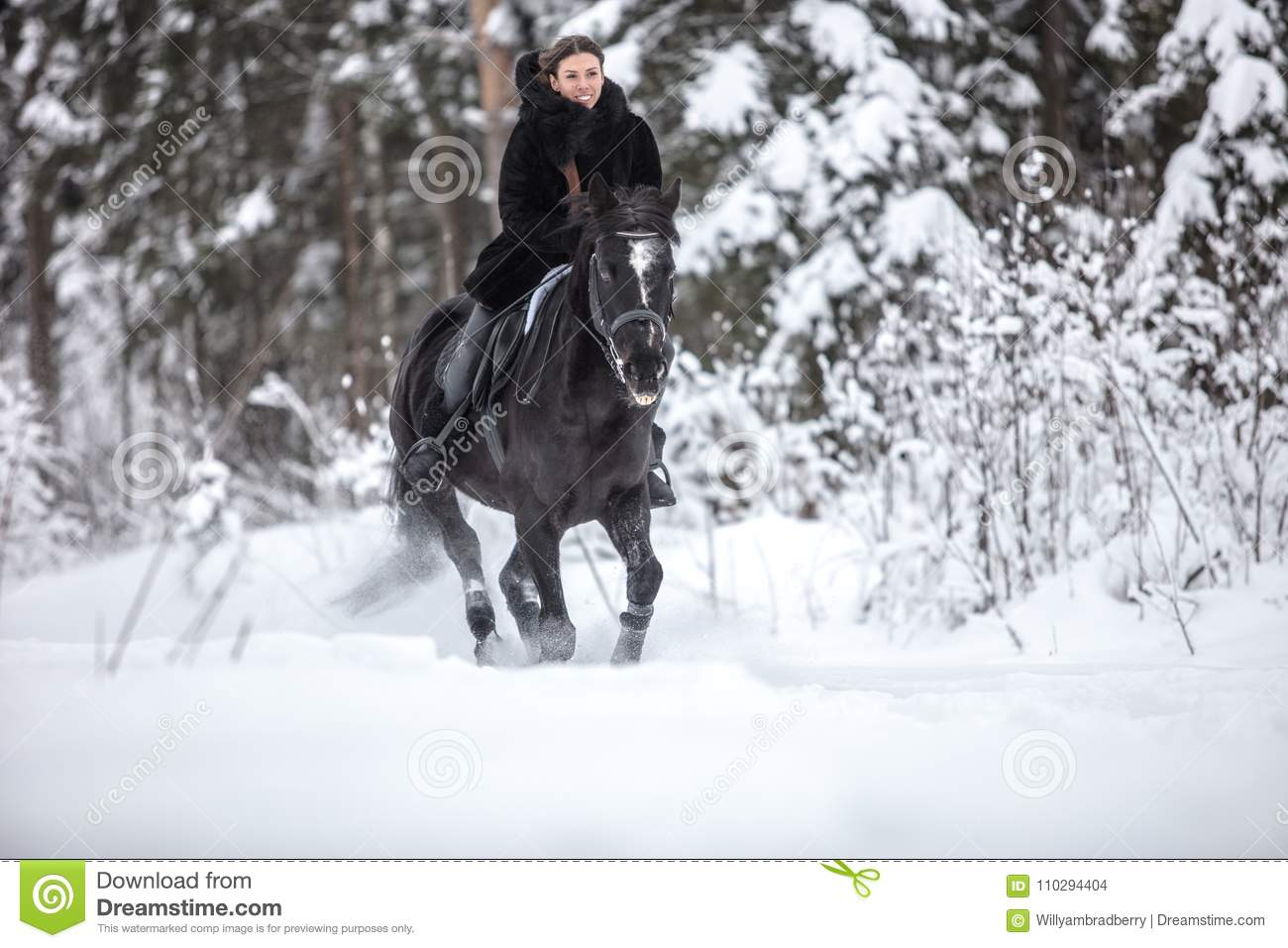 Black Horse Running In Snow On Winter Background Stock Photo Image Of Motion Portrait 110294404