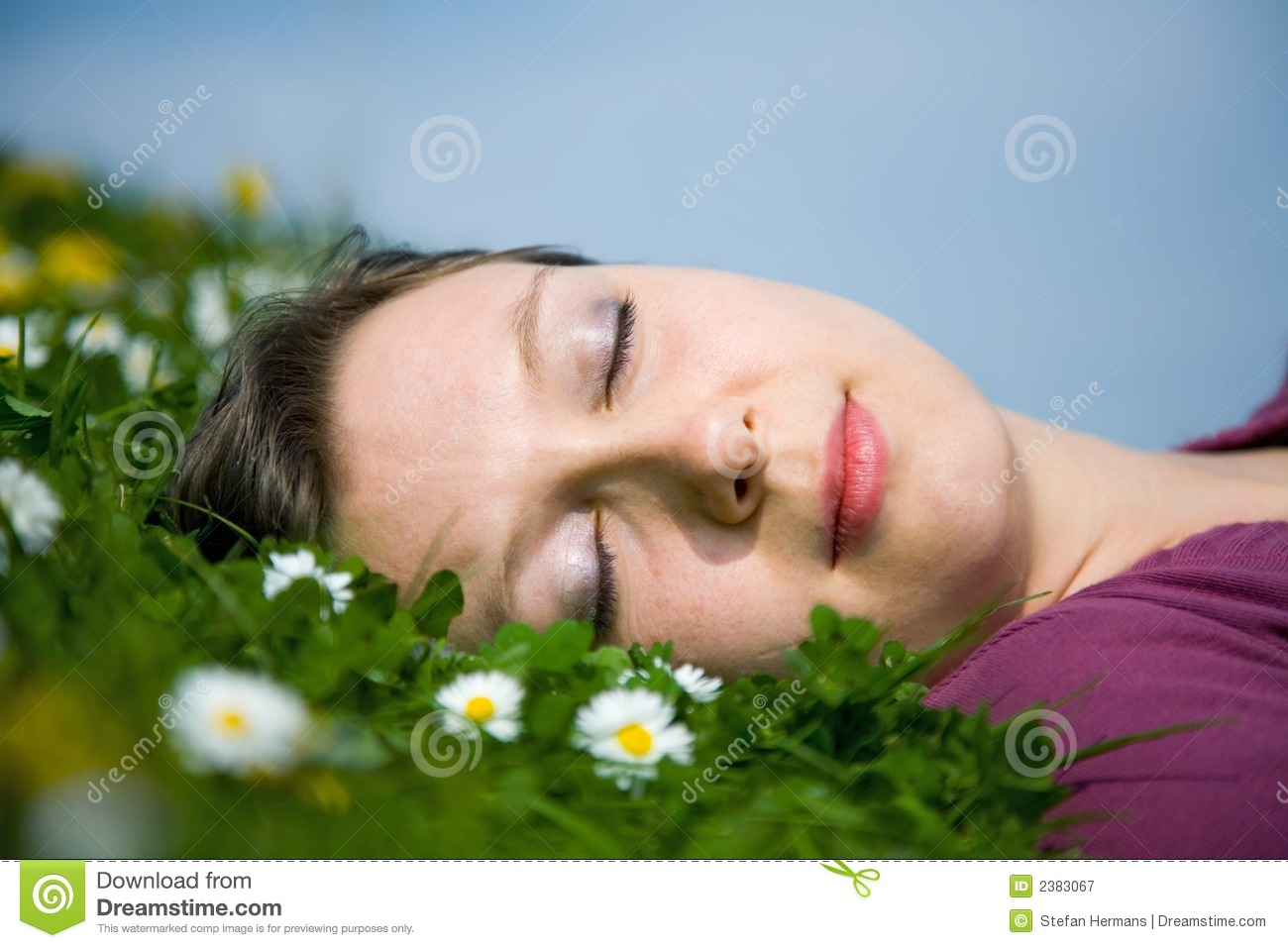 The Sleeping Swans >> Girl Sleeping In The Grass Royalty Free Stock Photography - Image: 2383067