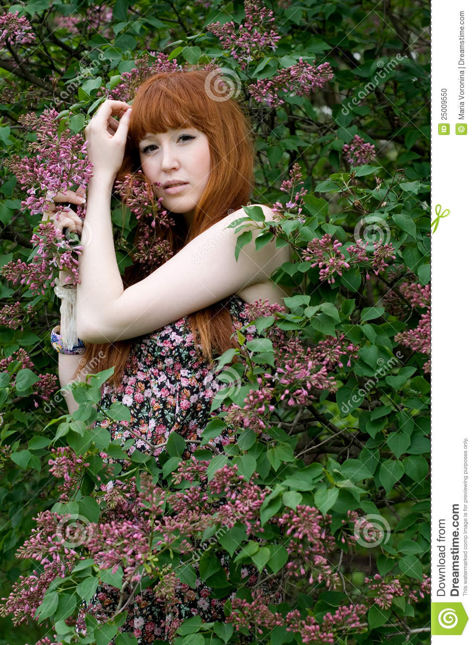 Girl Standing Near Lilac Bush Stock Photo Image 25009550