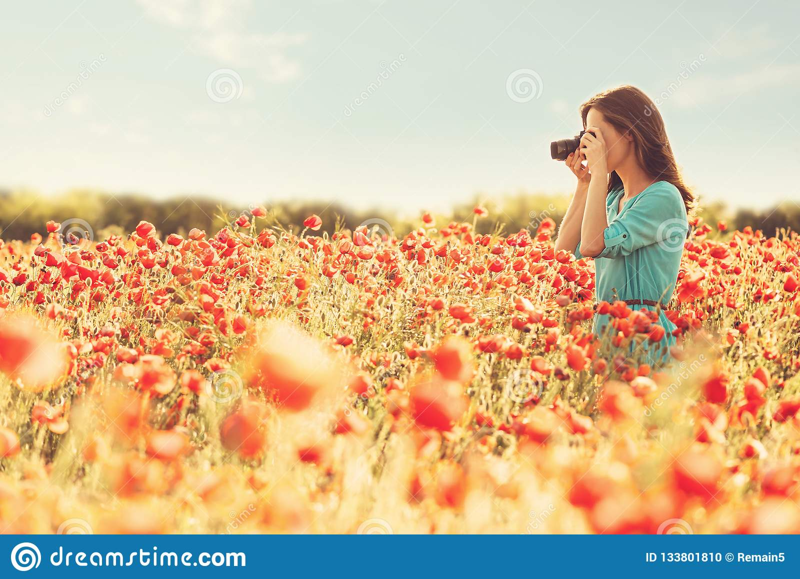 Girl taking photographs with camera in flower meadow.