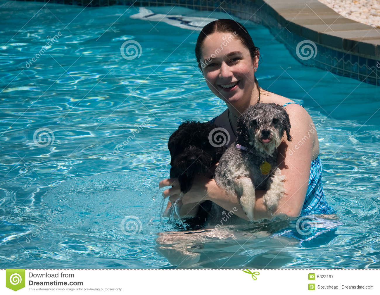 Girl and two dogs in a swimming pool