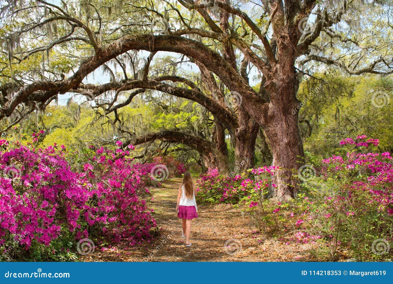 Girl Walking Alone In The Beautiful Blooming Garden Under Oak Trees ...
