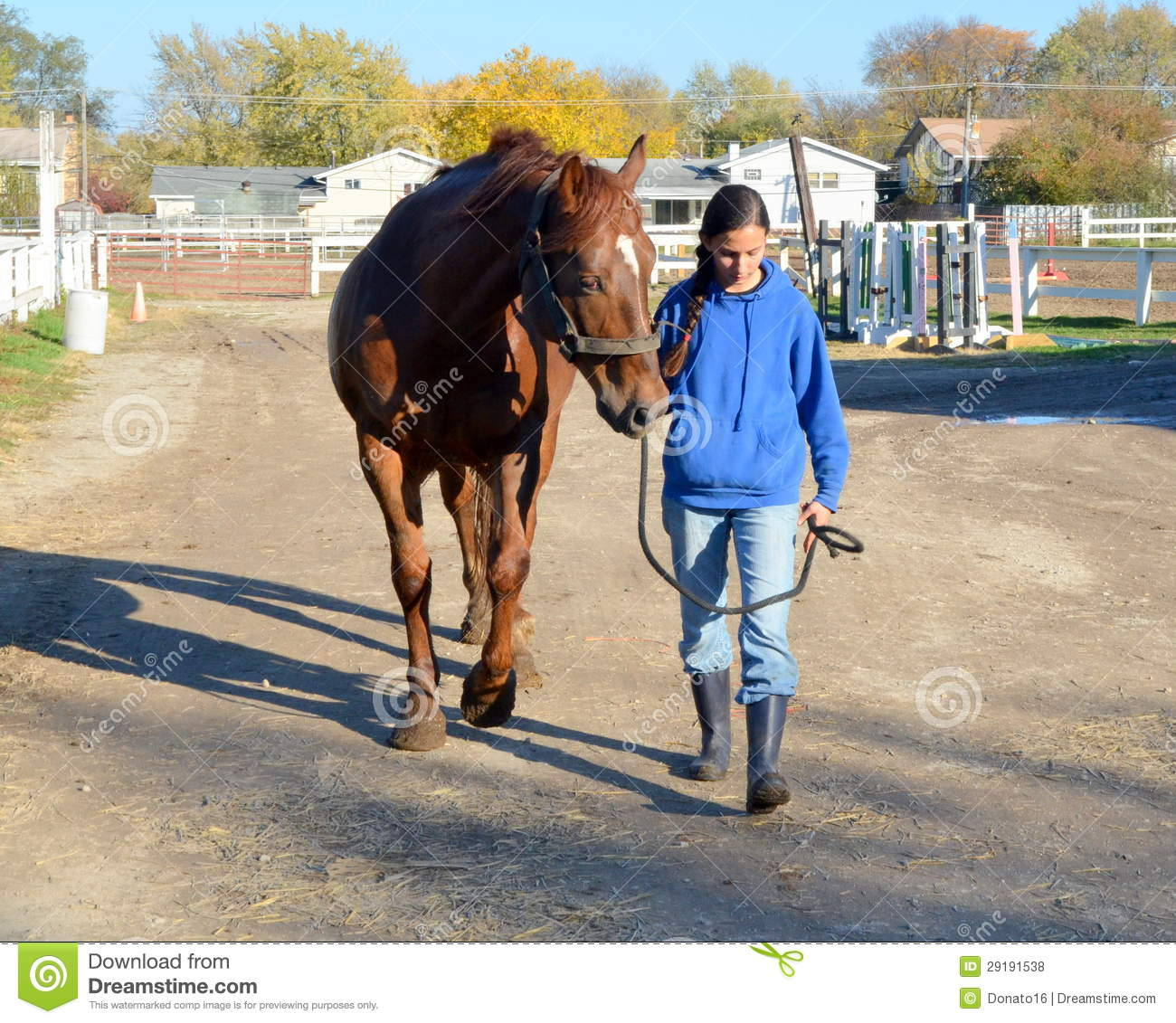 Girl Walking With Horse On Farm Stock Photo