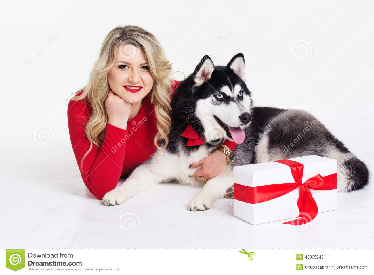 Nice Dog Gifts For Her Part - 6: Royalty-Free Stock Photo