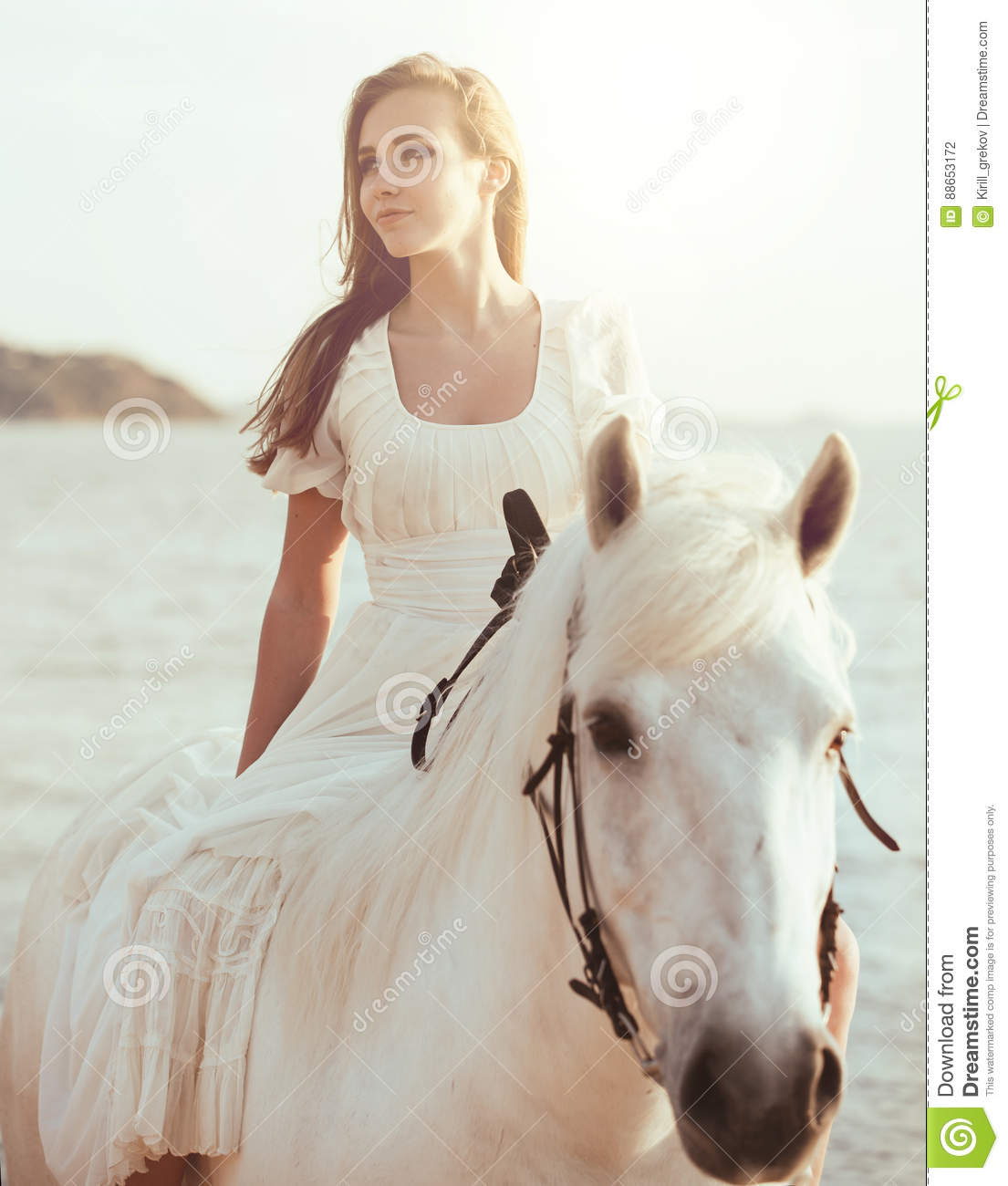 Girl In White Dress With Horse On The Beach Stock Photo - Image of ...