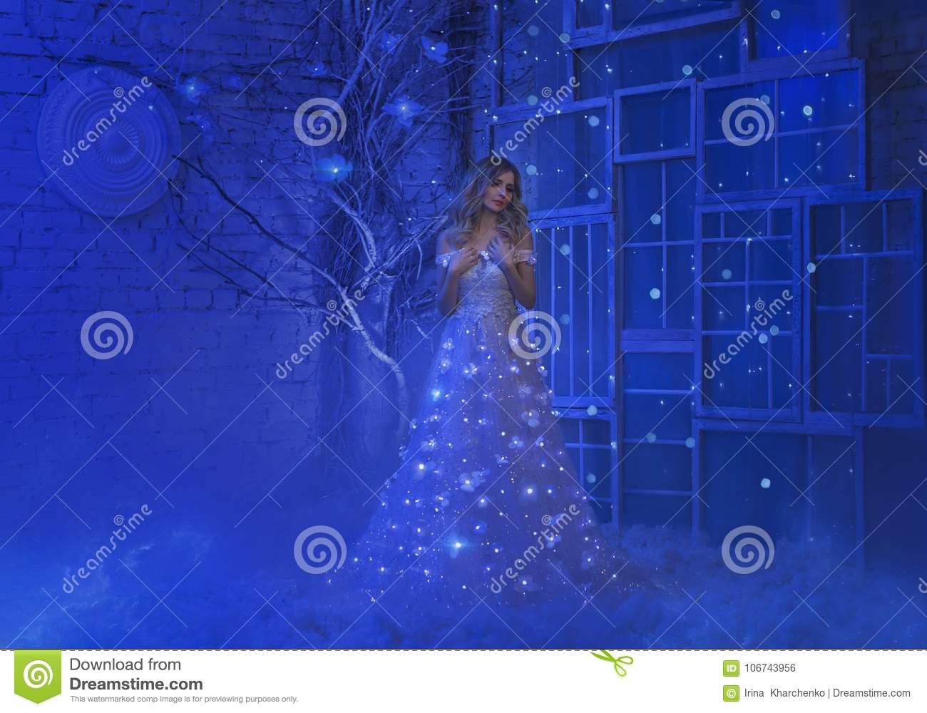 The girl woke up on Christmas night and in her room a miracle turned, magic turned her into a fairy princess.