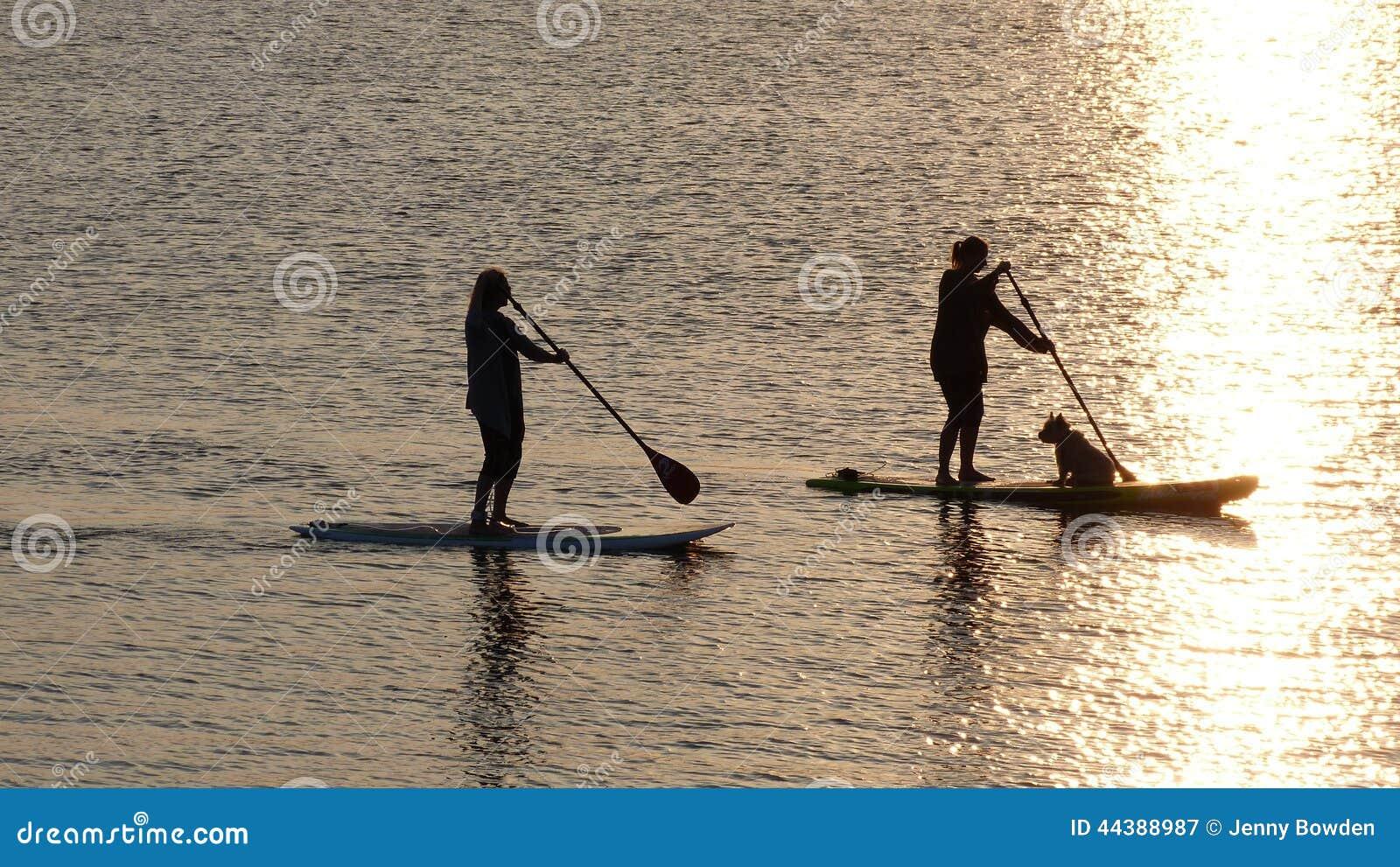 Dog Paddle Boarding Uk