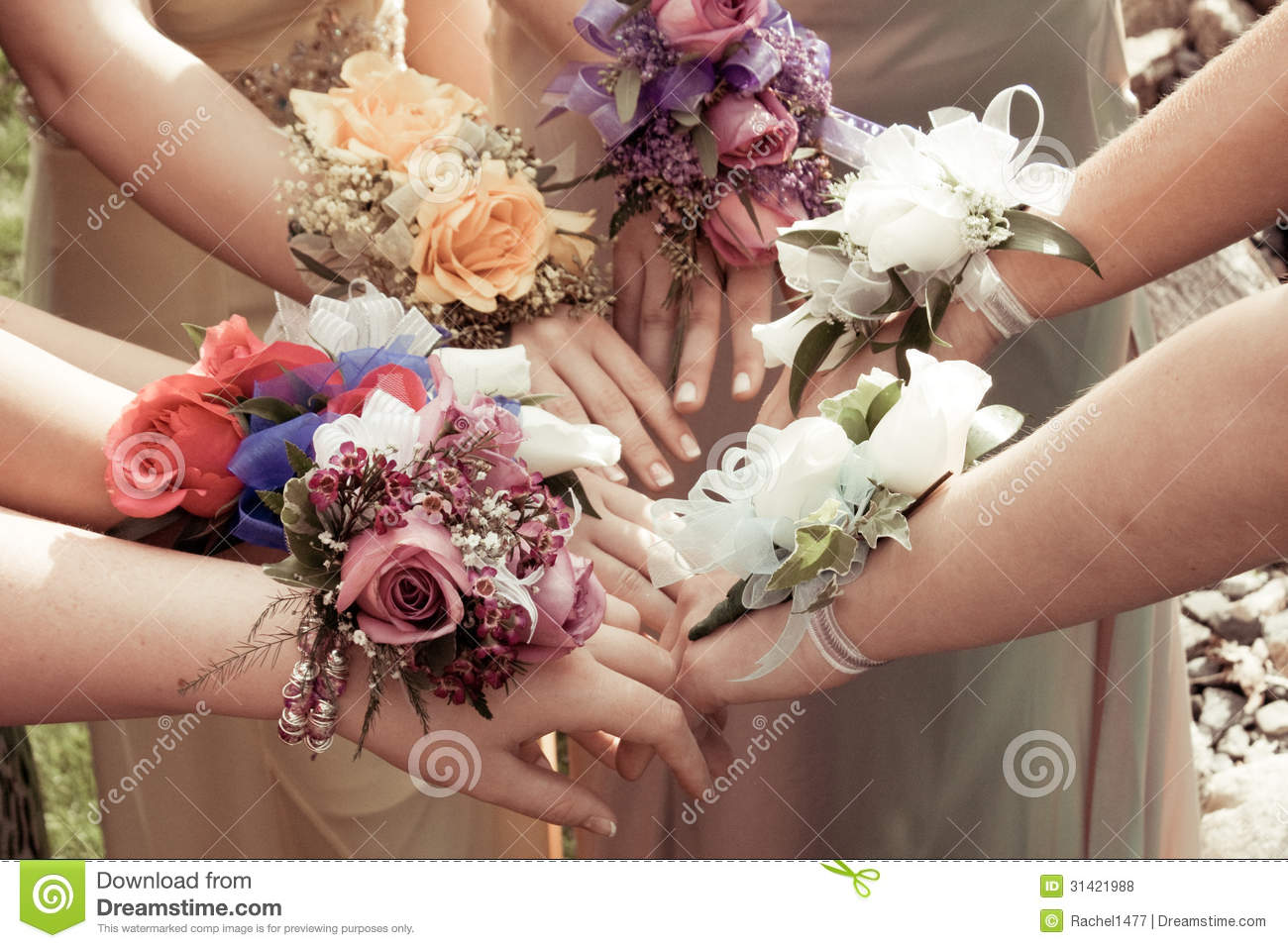 Girls Wearing Prom Corsages Royalty Free Stock Photos