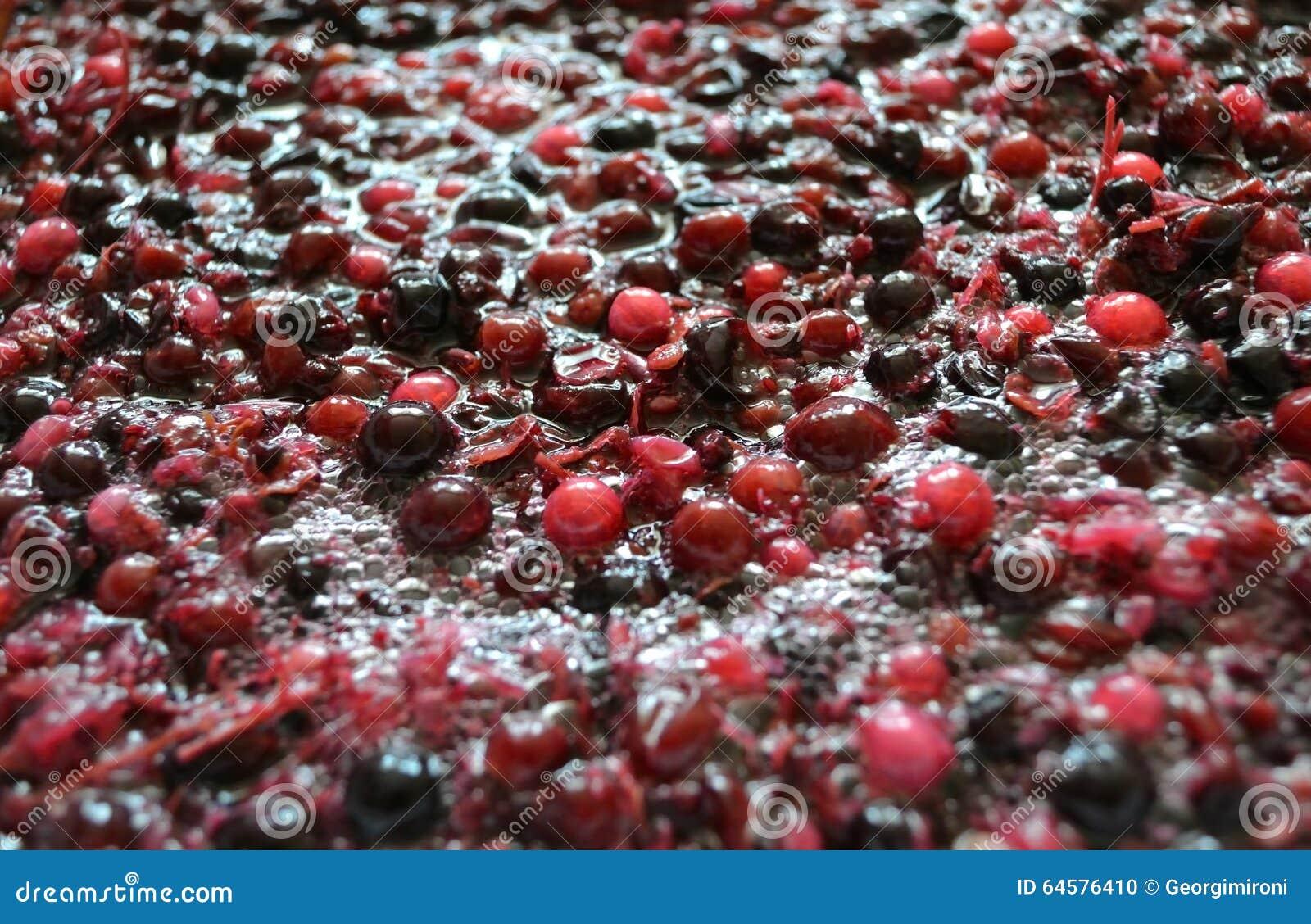 Gisting van de pulp van bessen voor wijn