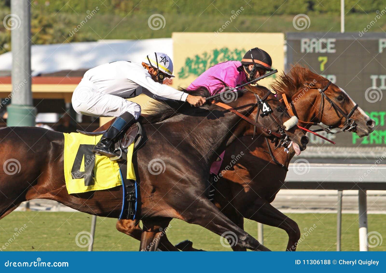 Gitano Hernando gewinnt die Goodwood Stangen