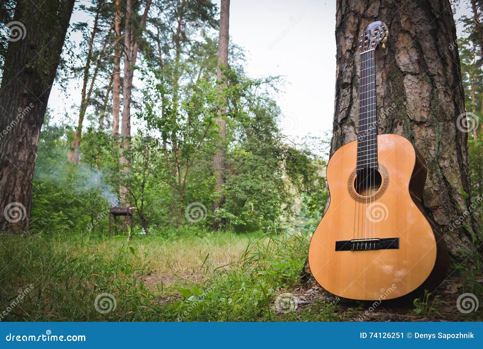 Gitara blisko drzewa w lesie na tle grill