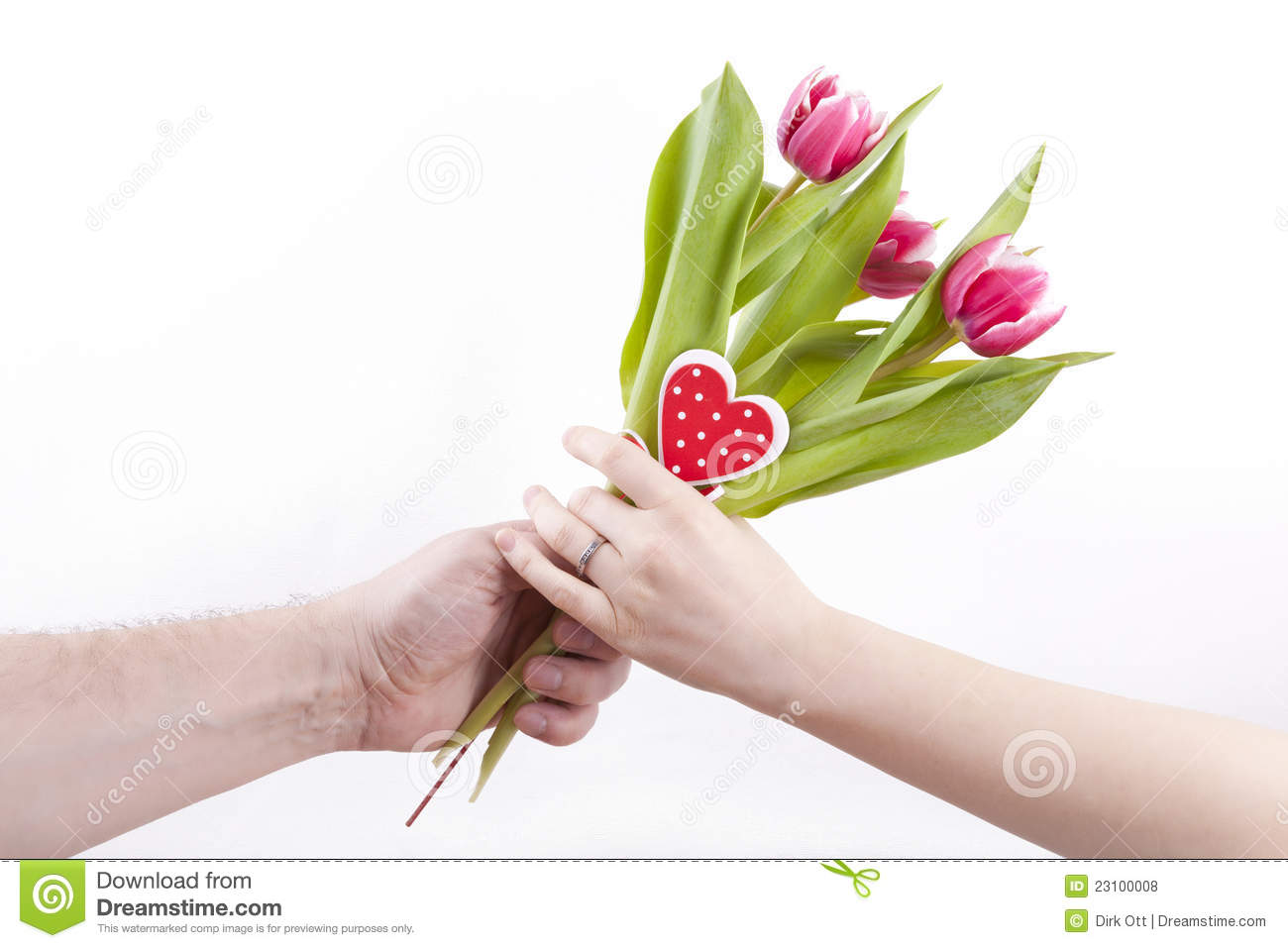 giving flowers royalty free stock photos