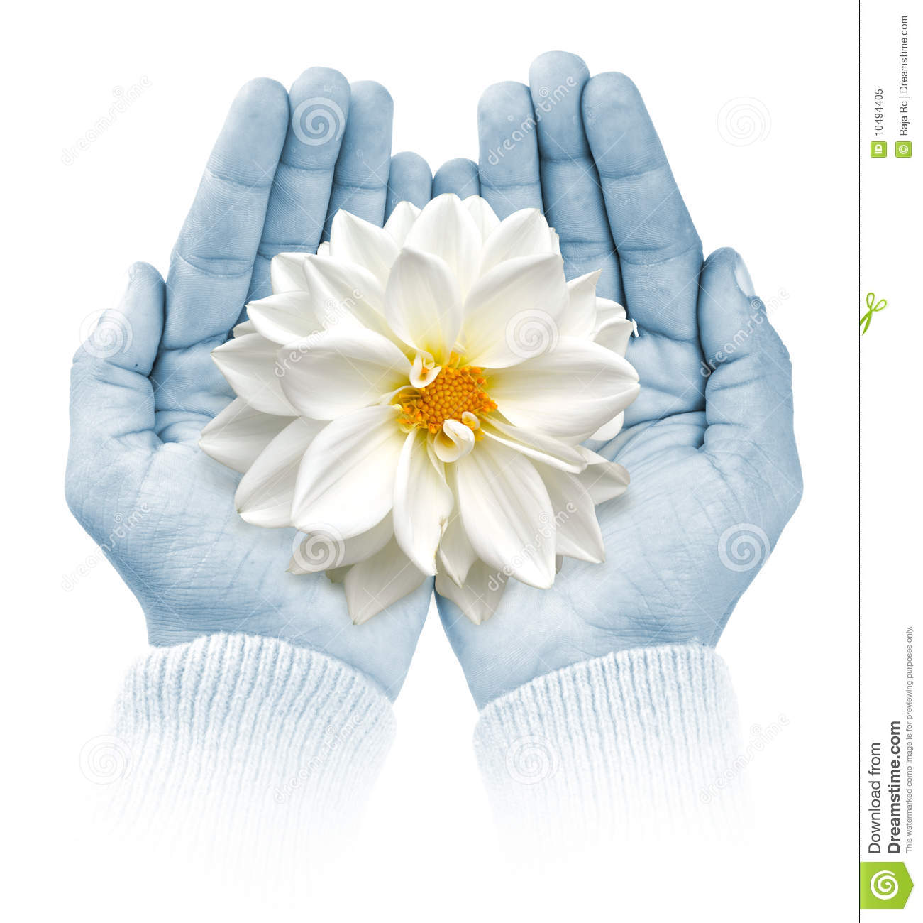 Giving life royalty free stock photo image 10494405 for Generous living